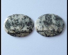 48.75Cts Natural Dendritic Agate Gemstone Pair