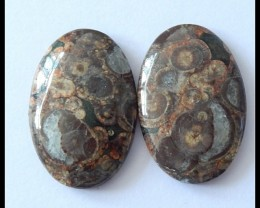 50.5cts Natural Rhyolite Gemstone Cabochon Pair