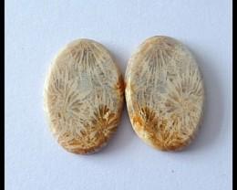 25.5cts Natural Coral Cabochon Pair (C0048)