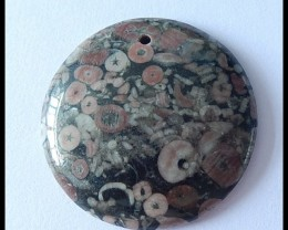 82Cts Natural Ammonite Pendant Bead