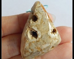 73.5Cts Natural Coral Fossil Pendant Bead