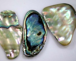 19.05 CTS ABALONE SHELL PARCEL (3PCS) ADG-1377