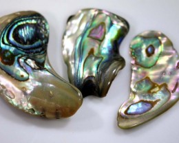 44.30 CTS ABALONE SHELL PARCEL (3PCS) ADG-1379