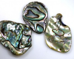 15.50 CTS ABALONE SHELL PARCEL (3PCS) ADG-1426