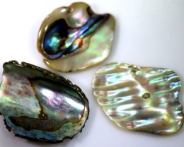 11.30 CTS ABALONE SHELL PARCEL (3PCS) ADG-1435