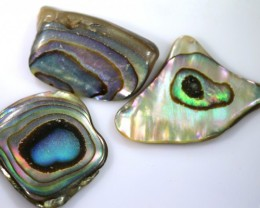 26.25 CTS ABALONE SHELL PARCEL (3PCS) ADG-1436