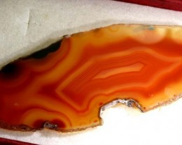 52 CTS AGATE SLICES   ANGC-447