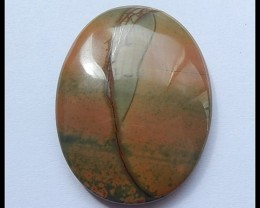 69Cts Natural Multi Color Picasso Jasper Cabochon