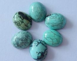 6 PCS Turquoise Cabochons,20.5cts