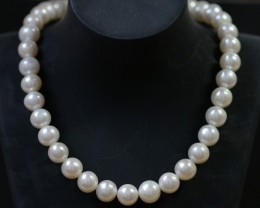 10 mm round graded high luster  pearl strand 40cm length   PPP150