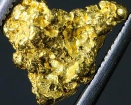 2.19 Grams Kalgoorlie Gold Nugget,Australia LGN 1351