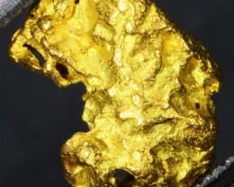 1.64 Grams Kalgoorlie Gold Nugget,Australia LGN 1362