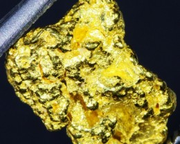 1.99 Grams Kalgoorlie Gold Nugget,Australia LGN 1365