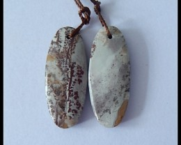 16.35Ct Natural Chohua Jasper Earring Beads(18091197)