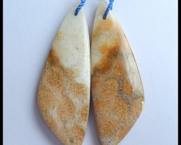 56.5 Ct Natural Coral Fossil Earring Beads(B1804112)