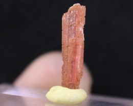 Very Extremely Rare Vayrynenite Crystal Undamaged From Pakistan Collector's