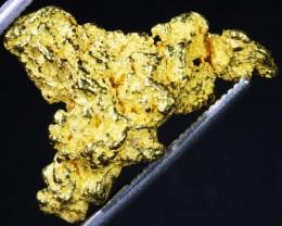7.08 Grams Kalgoorlie Gold Nugget,Australia LGN 1381