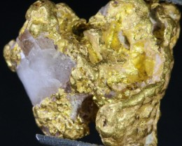 7.5 Grams Gold Nugget on Quartz Host Rock  LGN 1390