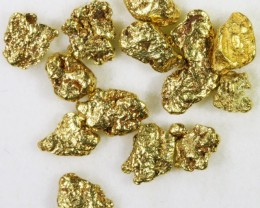 One Gram 10 screen Yukon Gold nuggets LGN 1410