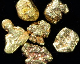 0.5 Gram 10 screen Yukon Gold nuggets LGN 1416