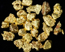 2 Gram 10 screen Yukon Gold nuggets LGN 1418