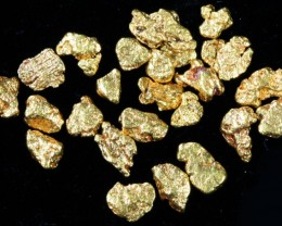2 Gram 10 screen Yukon Gold nuggets LGN 1419