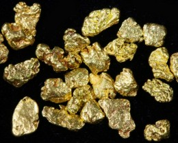 2 Gram 10 screen Yukon Gold nuggets LGN 1422