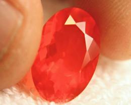 CERTIFIED - 4.71 Carat Vibrant Orange Fire Opal - Superb