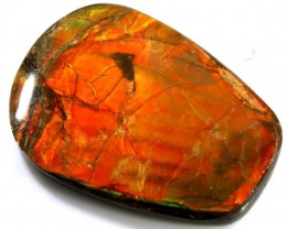 29.75 CTS  FLASHY AMMOLITE GEMSTONE TBM-829
