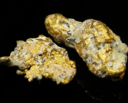 .61 Grams Espadarte Shipwreck of 1558 Gold Nugget CO 207