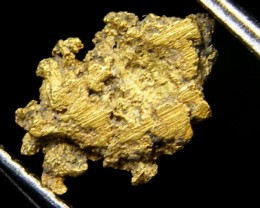 .20 Grams Espadarte Shipwreck of 1558 Gold Nugget CO 202