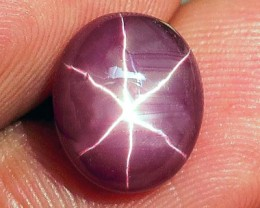 6.57 Carat Star Ruby - Gorgeous