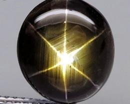 4.29 Carat Thailand Black Star Sapphire - Gorgeous