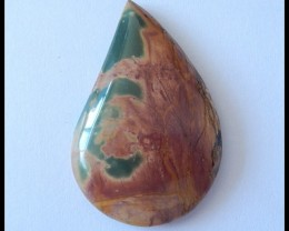 51.5Ct Natural Multi Color Picasso Jasper Cabochon