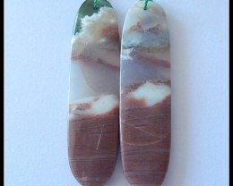 55.2Ct Natural Ocean Jasper Earring Beads