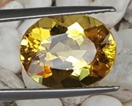 4.60cts,  Yellow Beryl / Helidore,  VVS1,  Untreated