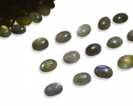 544cts / 392 st Well Calibrated Labradorite 8x6mm Ovals