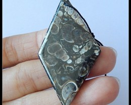 36Ct Natural Ammonite Gemstone Pendant Bead