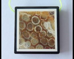 79.5Ct Natural Coral,Balck Jasper Intarsia Pendant Bead(B1804200)
