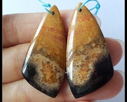 49Ct Natural Palm Wood Fossil Earring Beads