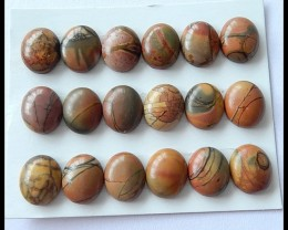 18PCS Natural Multi Color Picasso Jasper Cabochons Parcel