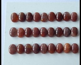 27 PCS Natural Fossil Wood Cabochons,38.5cts
