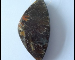 85.5Ct Natural Ammonite Gemstone Pendant Bead