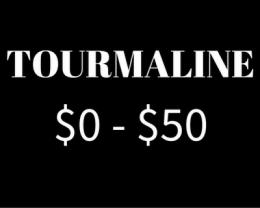 $0 - $50