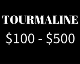$100 - $500