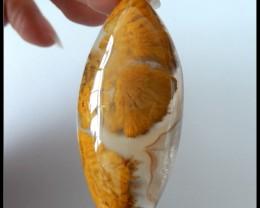 70.5Ct Natural Chohua Agate Gemstone Cabochon,Marquise CAB(B1804162)