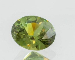 1.64 Oval Demantoid Garnet Gemstone!