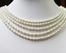 Five White Tip drill Oval Natural Pearl strand  GOGO 846b