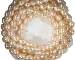 Oval Pastel Apricot Natural Pearl strands  GOGO 655