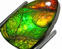 10.45 CTS AMMOLITE STONE FROM CANADA [STS325 ]SH